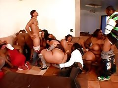 Awesome bbw orgy